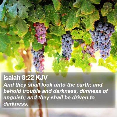 Isaiah 8:22 KJV Bible Verse Image