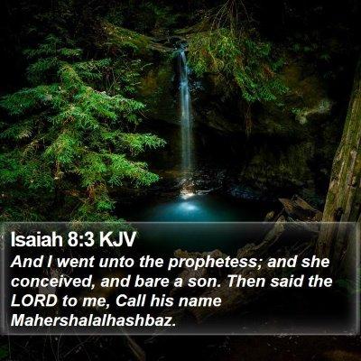 Isaiah 8:3 KJV Bible Verse Image