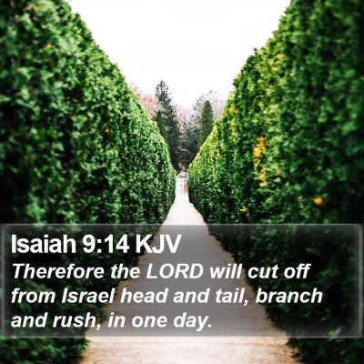 Isaiah 9:14 KJV Bible Verse Image