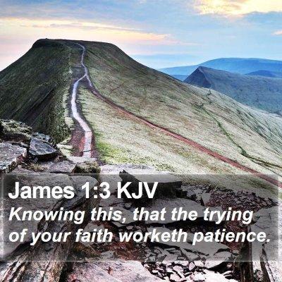 James 1:3 KJV Bible Verse Image