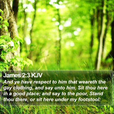 James 2:3 KJV Bible Verse Image
