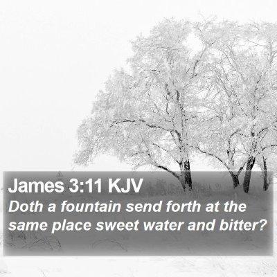 James 3:11 KJV Bible Verse Image