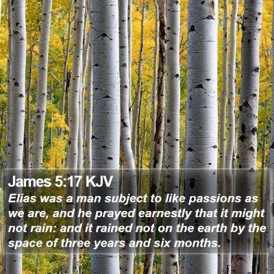 James 5:17 KJV Bible Verse Image