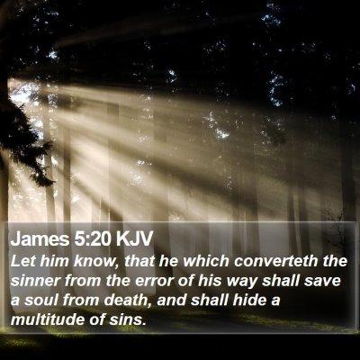 James 5:20 KJV Bible Verse Image