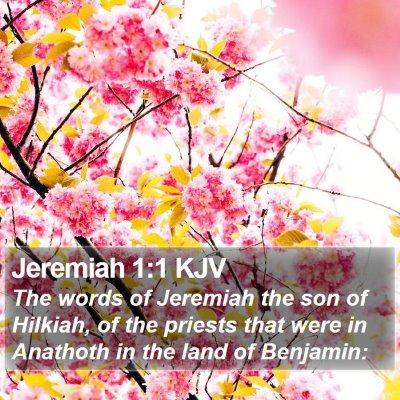 Jeremiah 1:1 KJV Bible Verse Image