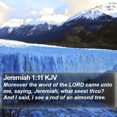 Jeremiah 1:11 KJV Bible Verse Image