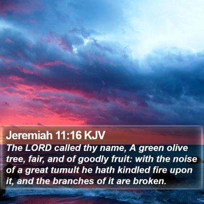 Jeremiah 11:16 KJV Bible Verse Image