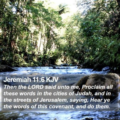 Jeremiah 11:6 KJV Bible Verse Image