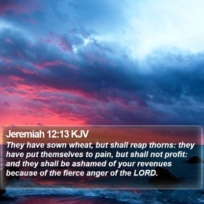 Jeremiah 12:13 KJV Bible Verse Image