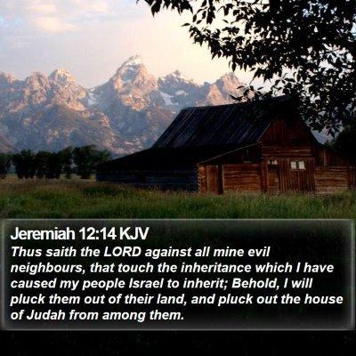 Jeremiah 12:14 KJV Bible Verse Image