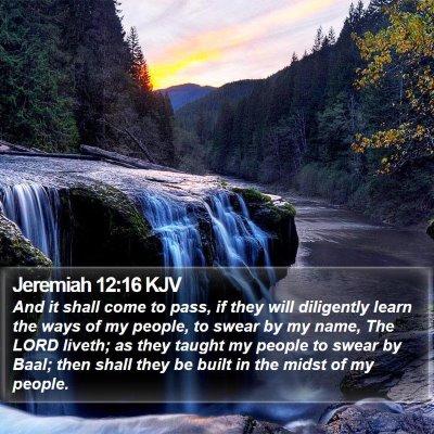 Jeremiah 12:16 KJV Bible Verse Image