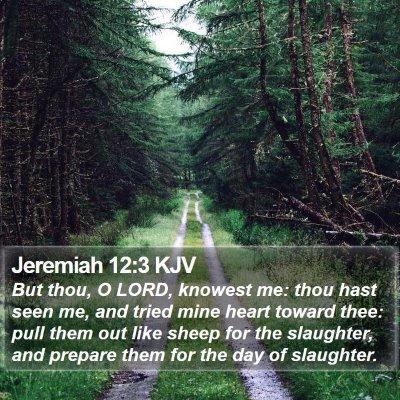 Jeremiah 12:3 KJV Bible Verse Image