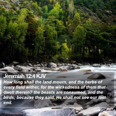 Jeremiah 12:4 KJV Bible Verse Image