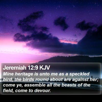 Jeremiah 12:9 KJV Bible Verse Image