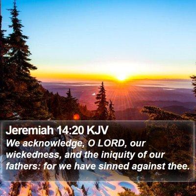 Jeremiah 14:20 KJV Bible Verse Image