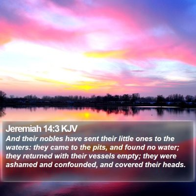 Jeremiah 14:3 KJV Bible Verse Image