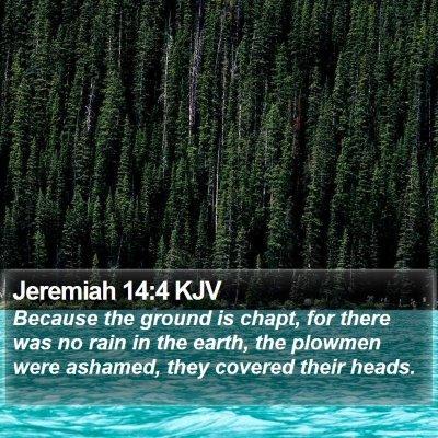 Jeremiah 14:4 KJV Bible Verse Image