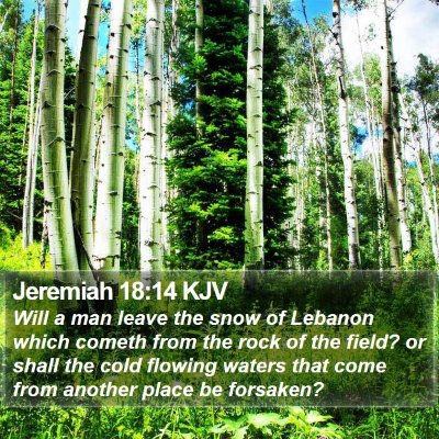 Jeremiah 18:14 KJV Bible Verse Image
