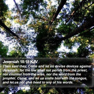 Jeremiah 18:18 KJV Bible Verse Image