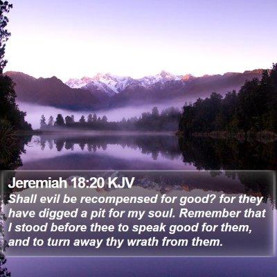 Jeremiah 18:20 KJV Bible Verse Image
