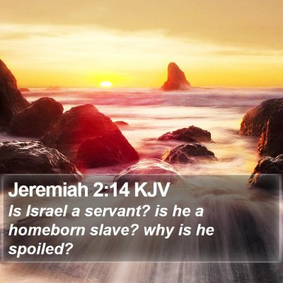 Jeremiah 2:14 KJV Bible Verse Image
