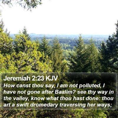 Jeremiah 2:23 KJV Bible Verse Image
