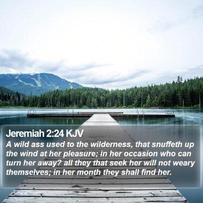Jeremiah 2:24 KJV Bible Verse Image
