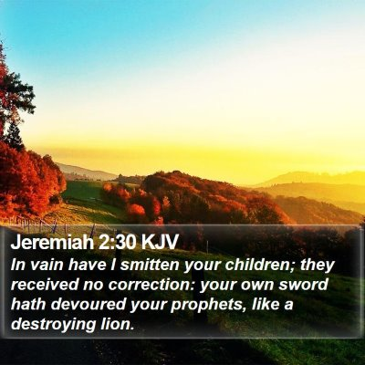 Jeremiah 2:30 KJV Bible Verse Image