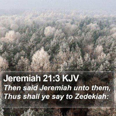 Jeremiah 21:3 KJV Bible Verse Image