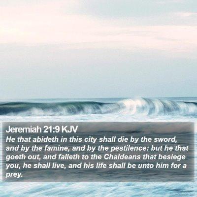 Jeremiah 21:9 KJV Bible Verse Image