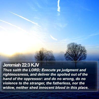 Jeremiah 22:3 KJV Bible Verse Image