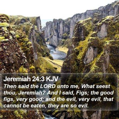 Jeremiah 24:3 KJV Bible Verse Image