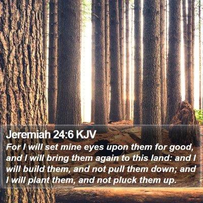 Jeremiah 24:6 KJV Bible Verse Image