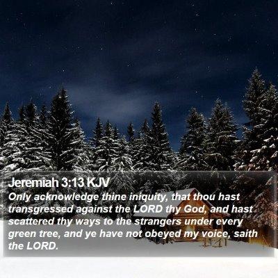 Jeremiah 3:13 KJV Bible Verse Image
