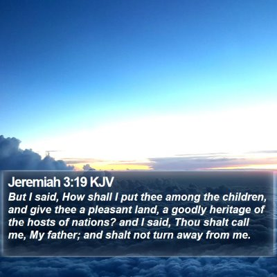 Jeremiah 3:19 KJV Bible Verse Image