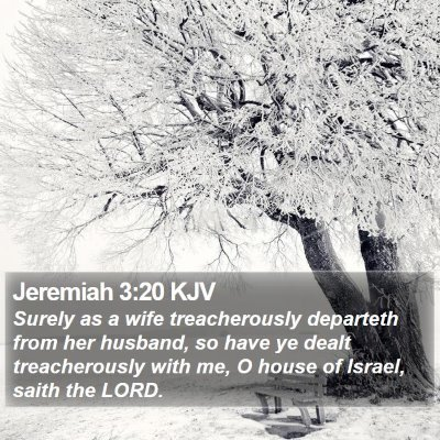 Jeremiah 3:20 KJV Bible Verse Image