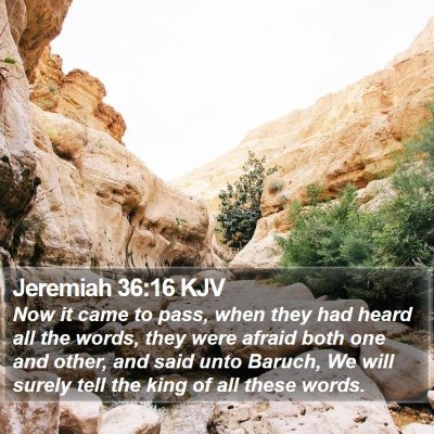 Jeremiah 36:16 KJV Bible Verse Image