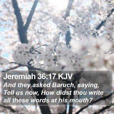 Jeremiah 36:17 KJV Bible Verse Image