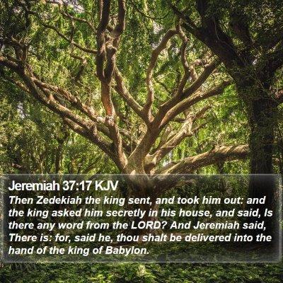 Jeremiah 37:17 KJV Bible Verse Image