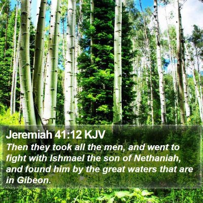 Jeremiah 41:12 KJV Bible Verse Image