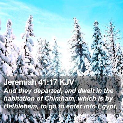 Jeremiah 41:17 KJV Bible Verse Image