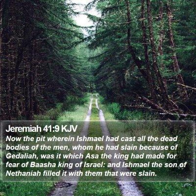 Jeremiah 41:9 KJV Bible Verse Image