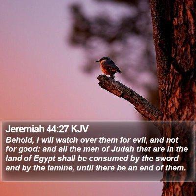 Jeremiah 44:27 KJV Bible Verse Image