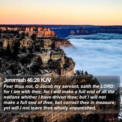 Jeremiah 46:28 KJV Bible Verse Image