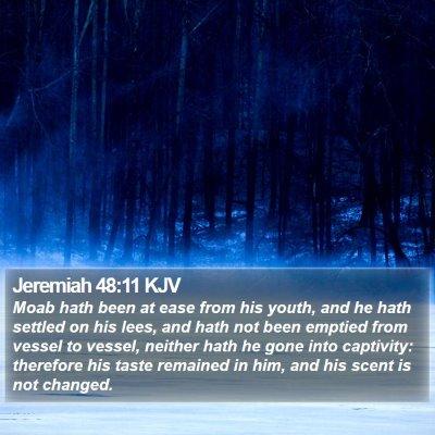 Jeremiah 48:11 KJV Bible Verse Image
