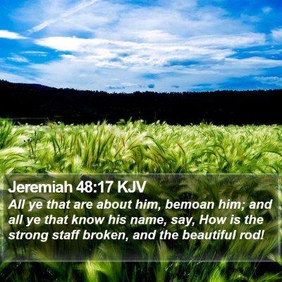 Jeremiah 48:17 KJV Bible Verse Image