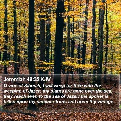 Jeremiah 48:32 KJV Bible Verse Image
