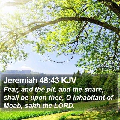 Jeremiah 48:43 KJV Bible Verse Image