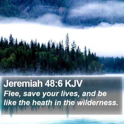Jeremiah 48:6 KJV Bible Verse Image