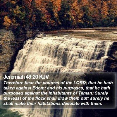 Jeremiah 49:20 KJV Bible Verse Image